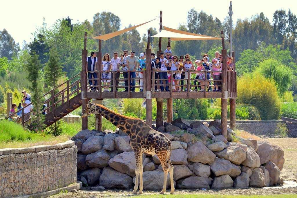 İzmir Sasalı Doğal Yaşam Parkı