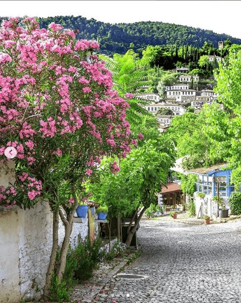 şirince sokakları