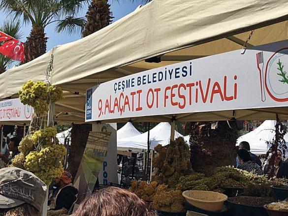 alaçatı ot festivali
