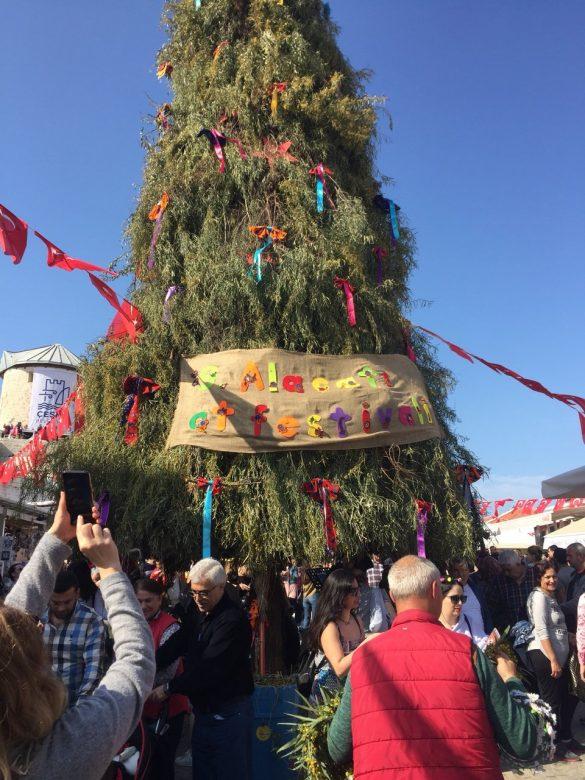 çeşme  ot festivali