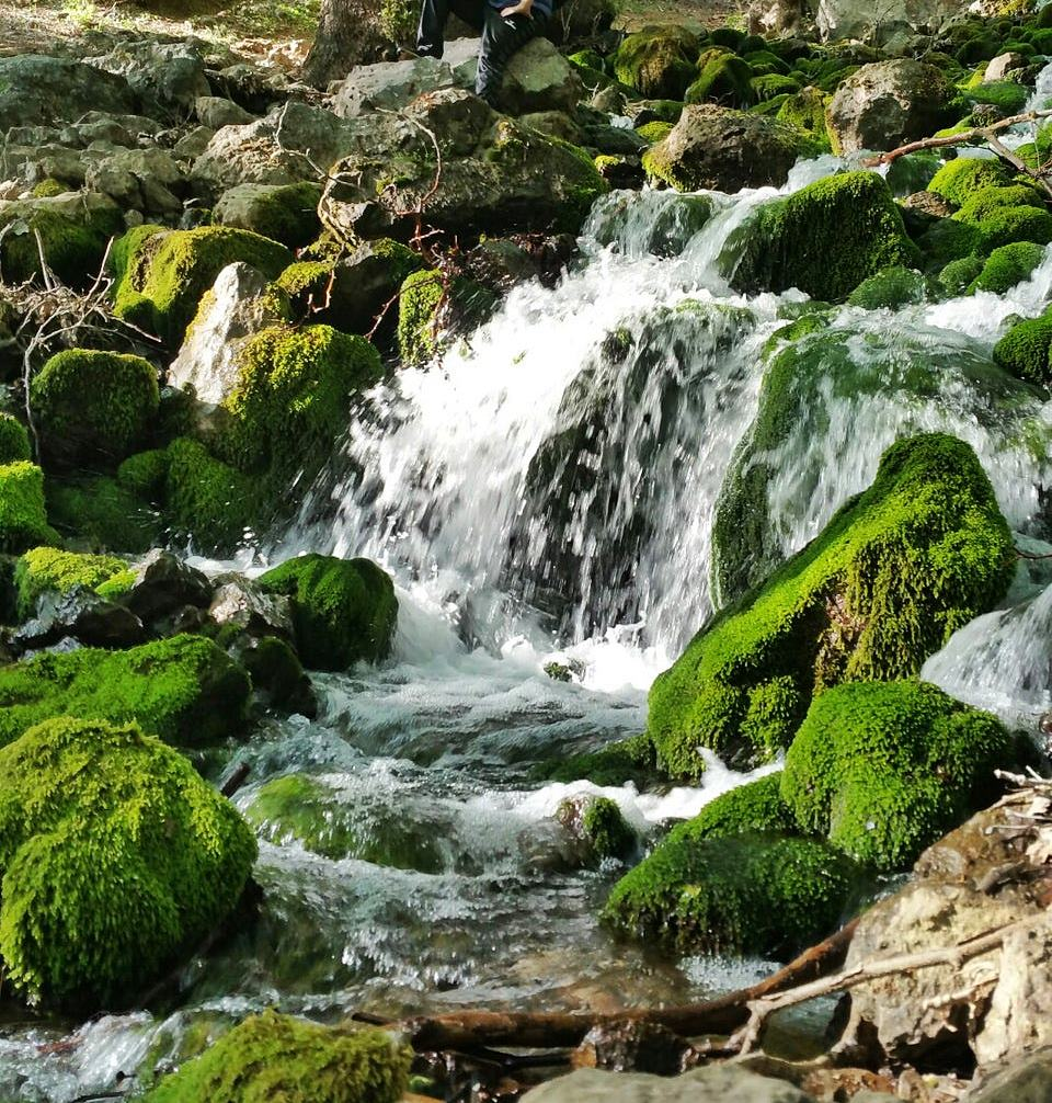 kaynaklar doğal alanlar