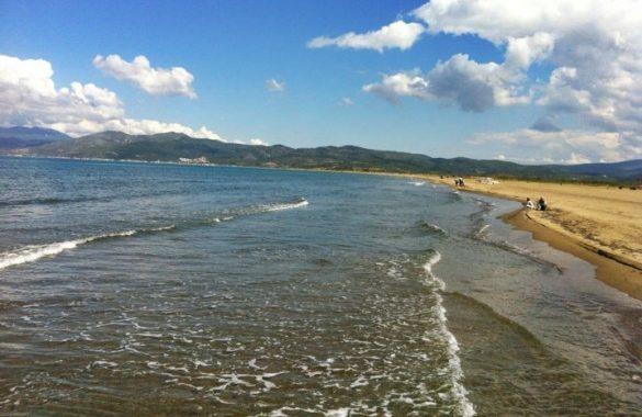 pamucak denizi