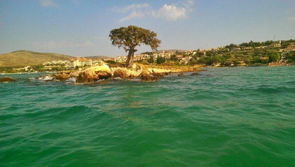 zeki müren adası