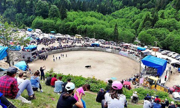 Ayder Kültür Sanat ve Doğa Festival