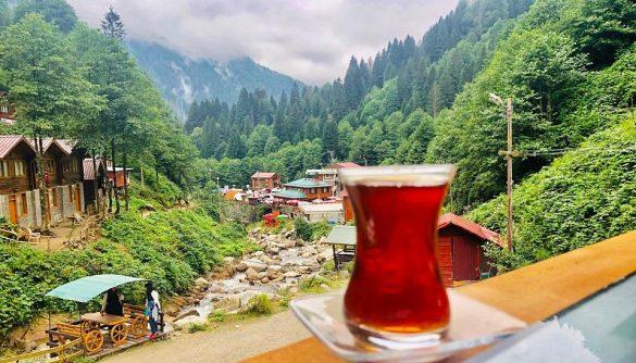 Ayder Yaylası Çay