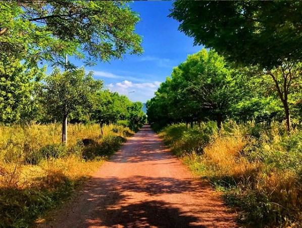 Kent Ormanı İzmir İnciraltı
