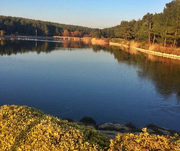 Gaziemir Sarnıç Göleti