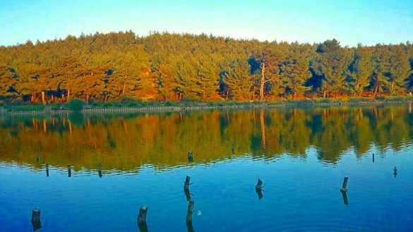 Sarnıç Göleti