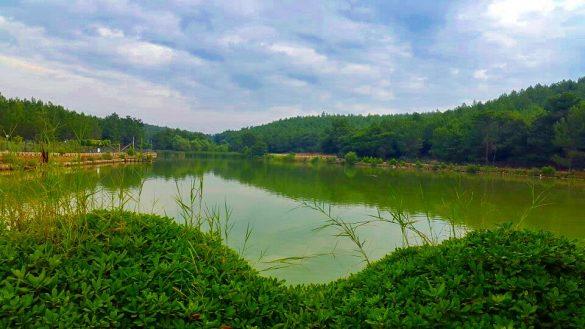 Sarnıç Gölet