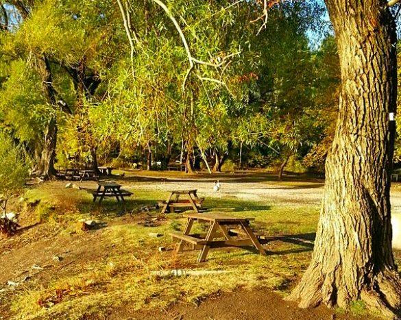 Karagöl Tabiat Parkı Piknik Alanı