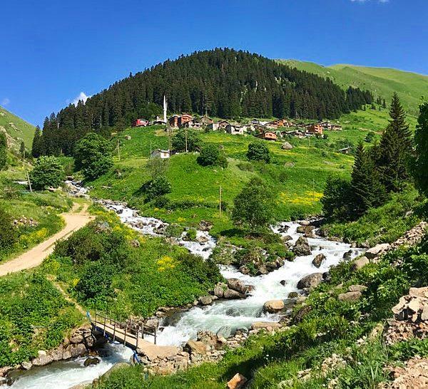 Trabzon Haldizen Yaylası