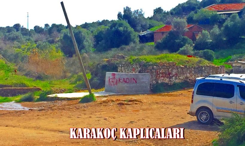 Karakoç Kaplıcaları