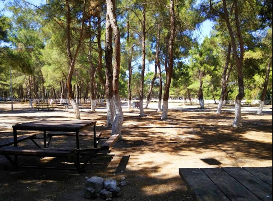 Sarnıç Piknik Alanı
